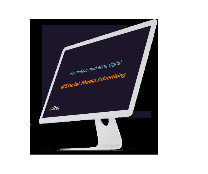 Formation marketing digital : social media advertising
